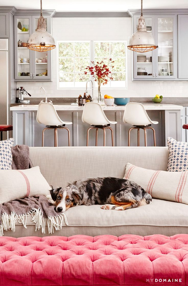 Neutral kitchen with industrial lights, neutral sofa and pink tufted ottoman with dog