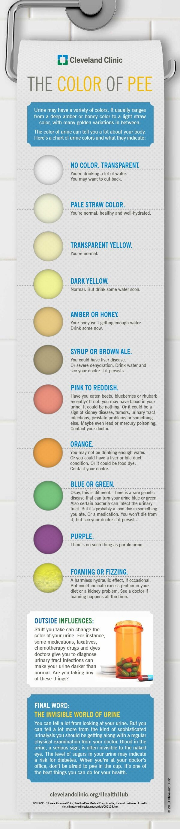 The contents of your toilet can tell you a lot about your health and body. So what does the colour of your urine mean? This infographic will reveal all.
