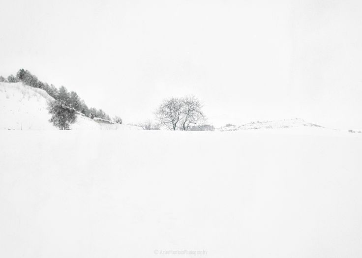 The tree in the snow by Asier Montoia on 500px