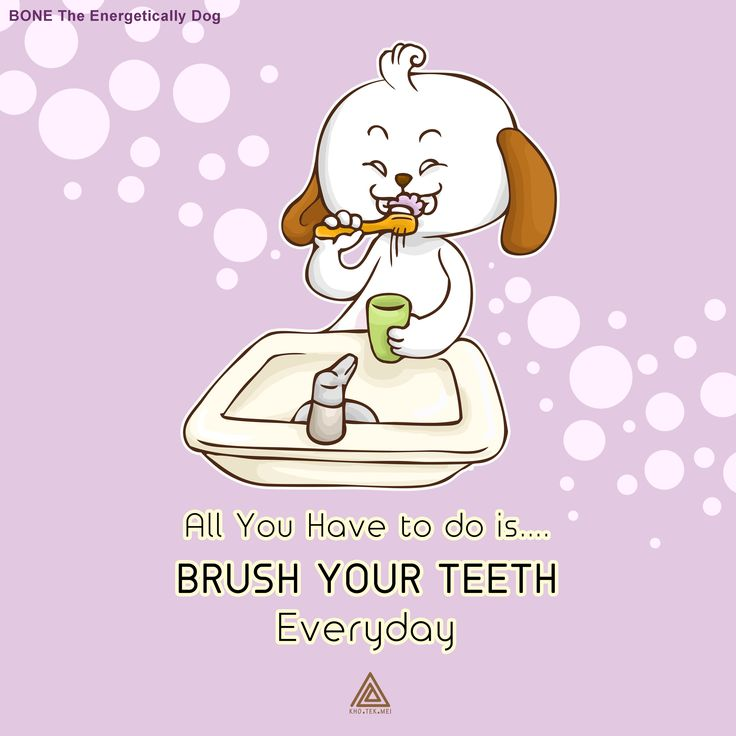 Download all the sticker expressions on LINE Sticker shop. Type the name of the sticker BONE The Energetically Dog to download, or by click the link below...