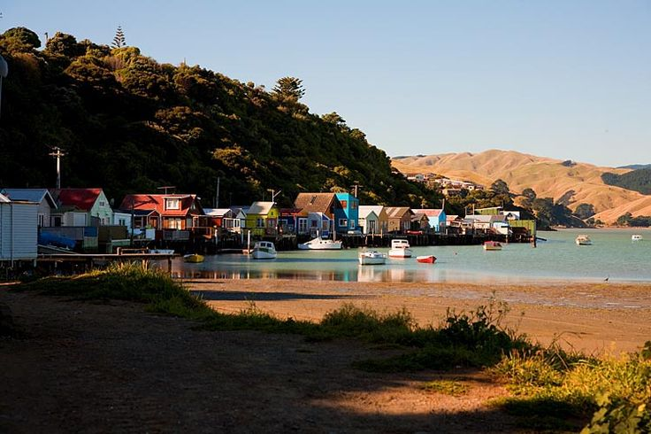 Paramata, water front houses,  see more at New Zealand Journeys app for iPad www.gopix.co.nz