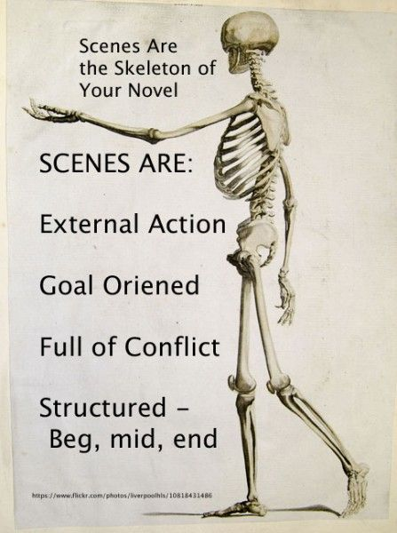 Scenes: The Skeleton of a Novel