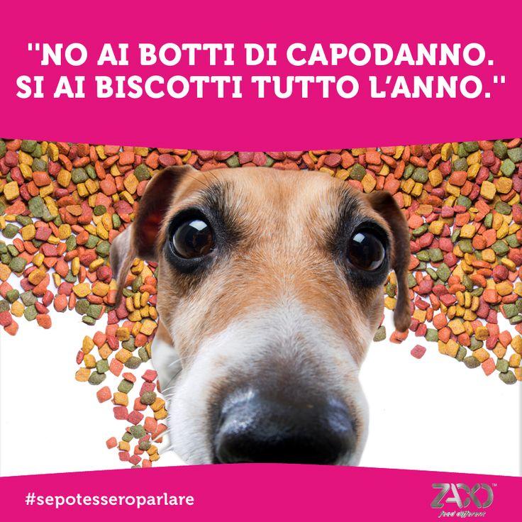 Sai che puoi distrarre il tuo cane dai botti di capodanno con degli ottimi snack o dei giochi? Leggi i nostri pratici consigli --> http://www.zacko.it/a.pag/botti-di-capodanno-come-fare-con-cani-e-gatti-pzk2242kzczk189.html