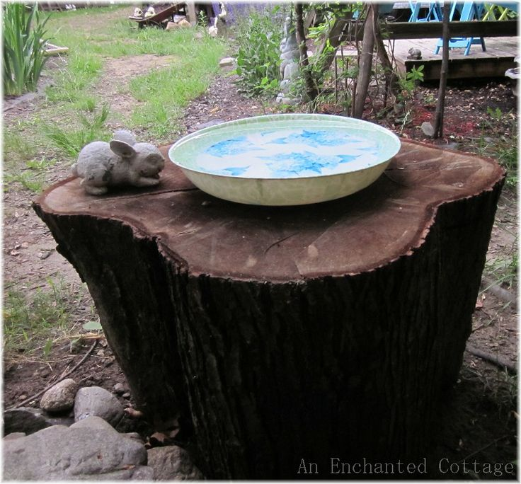 i have a tree stump i can do this with