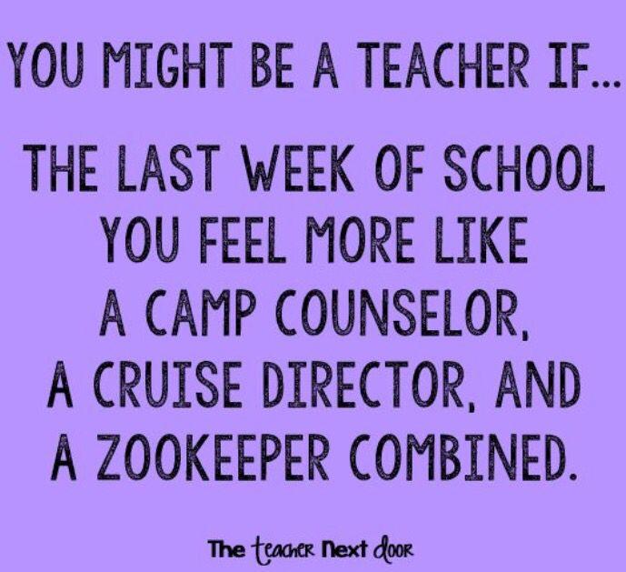 Funny Teacher Quotes: Best 25+ Joke Of The Week Ideas On Pinterest