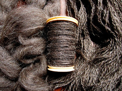 Spinning Jacob Sheep's Wool