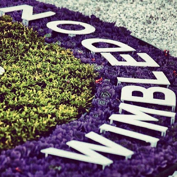 Wimbledon Insignia ...#JacobsCreek #MyPerfectPicnic