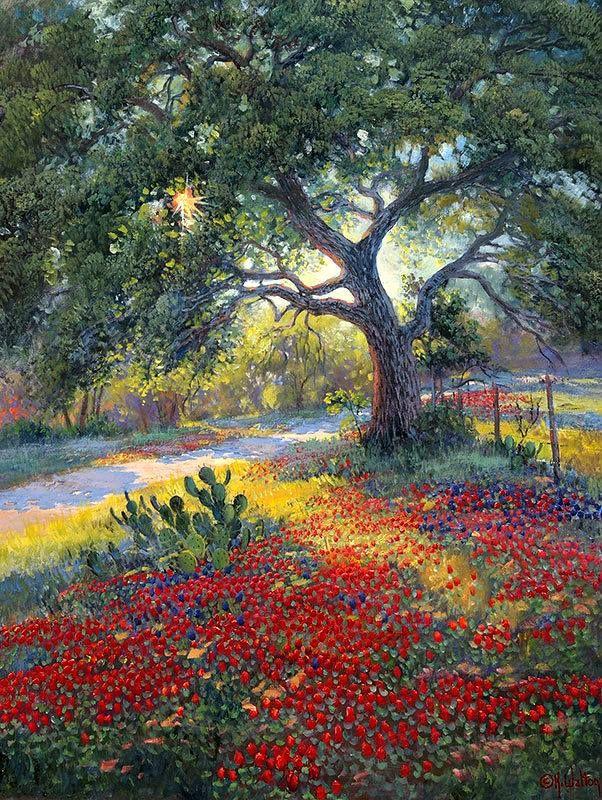 Last Light By Artist Kay Walton Oil Painting Landscape Landscape Names Of Artists