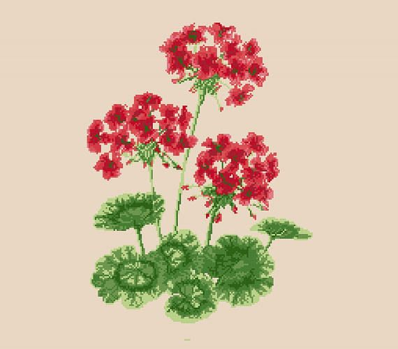 Cross stitch pattern GERANIUM  floral cross