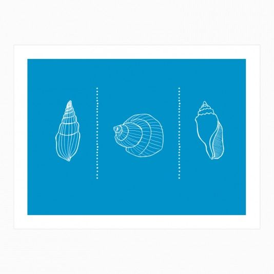 Three Shells One art | decor | wall art | inspiration | contemporary | home decor | idea | humor | gifts