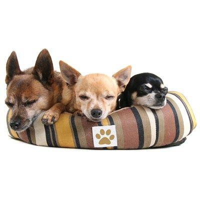 Hundesenge & Madrasser