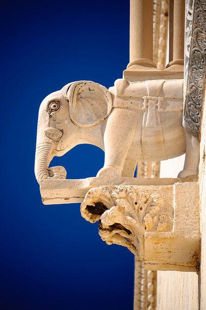 Trani, Puglia, Italy...it's an elephant!!!