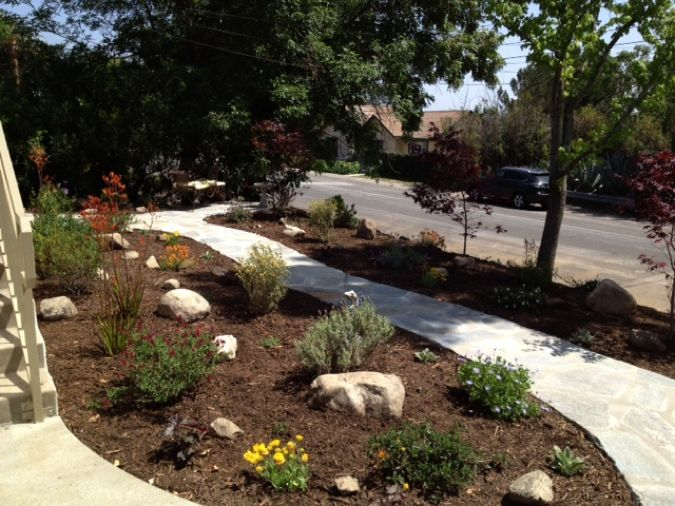 Drought tolerant gardens xeriscape is a landscaping for Drought tolerant yard