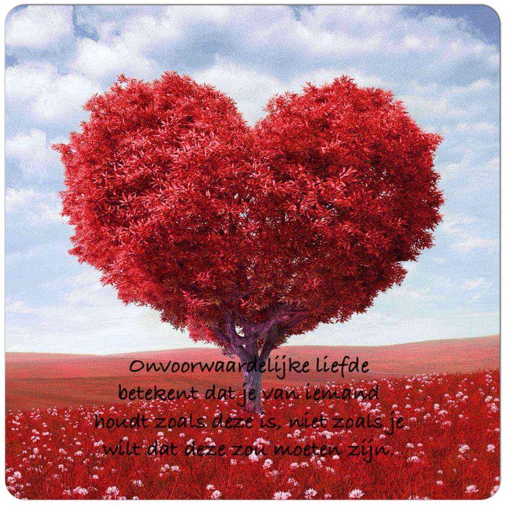 Onvoorwaardelijke #liefde betekent dat je van iemand #houdt zoals deze is, niet zoals je wilt dat deze zou moeten zijn