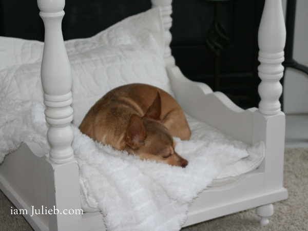 Diy homemade doggie bed how cute is this does greta need for Homemade beds for dogs