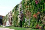 Pegando um gancho no assunto The City 2.0, que falamos ontem no texto sobre o TEDxPraçaDaLiberdade, uma ação positiva, que favorece as áreas urbanas e o meio ambiente, é a instalação dos jardins verticais. Já estão presentes em belos projetos [...]