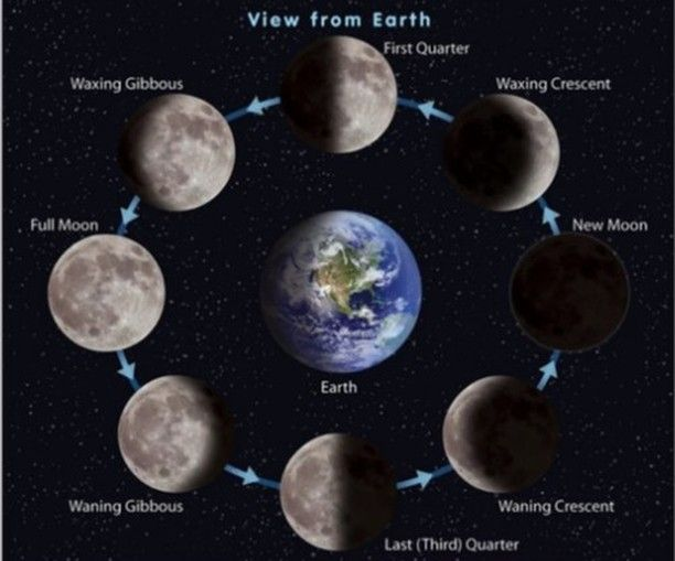 Did You Know It S National Moon Day Today Learn About The Moon