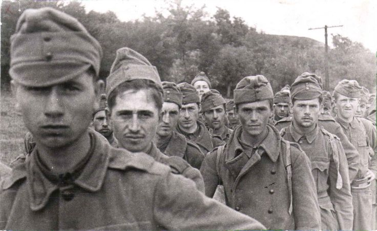 Hungarian POWs led away to Soviet captivity after the German defeat in Voronezh in 1943. The 2nd Hungarian Army, fighting alongside the 4rth Panzer Army, was decimated losing all is weapons and equipment and 148,000 officers and men killed or wounded.