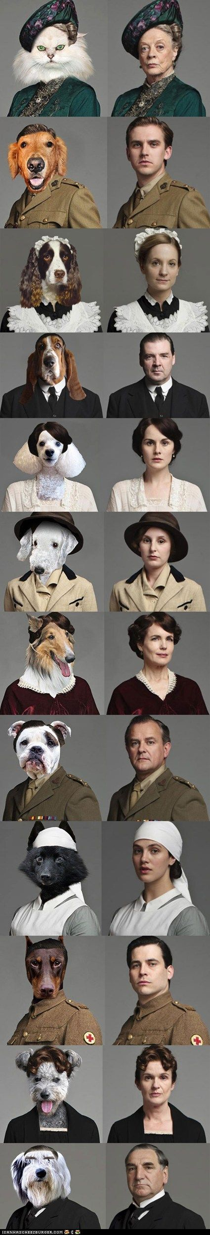 the cast of Downton Abby as cats and dogs-spot on.