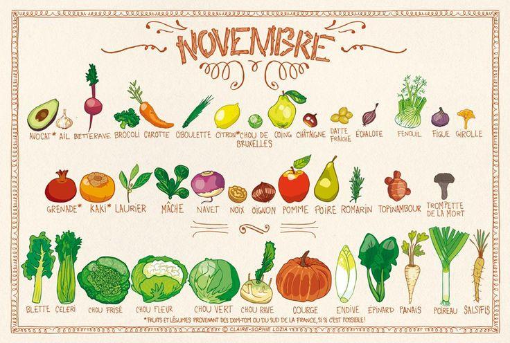 Calendrier des Fruits & légumes de Novembre. Comme chaque mois, sur mrmondialisation.org, voici votre calendrier pour consommer de saison, illustré gratuitement par la dessinatrice Claire-Sophi…