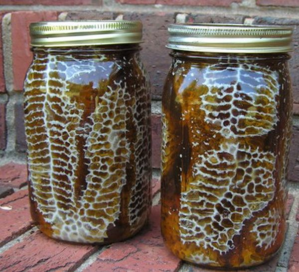 DIY Beehive in a Jar – Fresh honey in your backyard! - Mrs Happy Homemaker