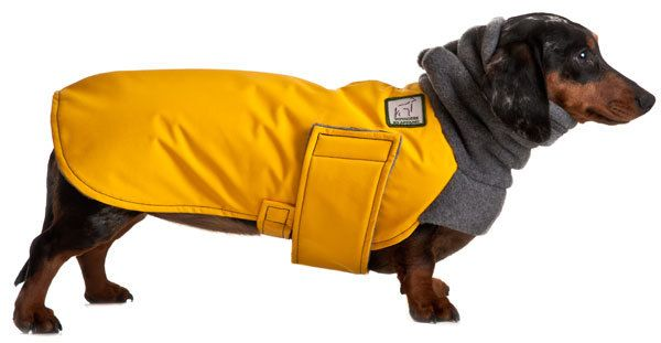 MINIATURE DACHSHUND Winter Dog Coat by VoyagersK9Apparel on Etsy, $57.00. Buying this for my weiner