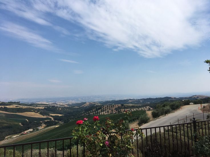 The Passion for Paso Robles Cabernet. View from DAOU Winery. Paso Robles, CA