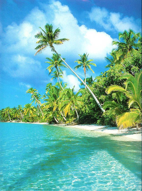 Aitutaki, Cook Islands, I shall be seeing you in Febuary!!!