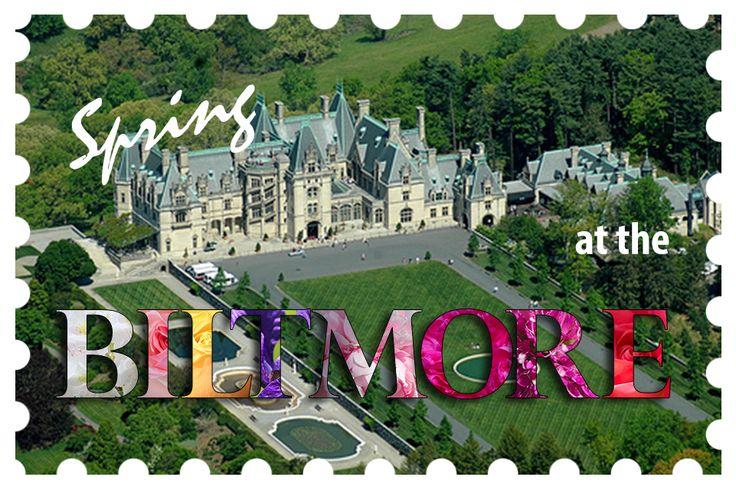 Assign 10 Biltmore Postcard