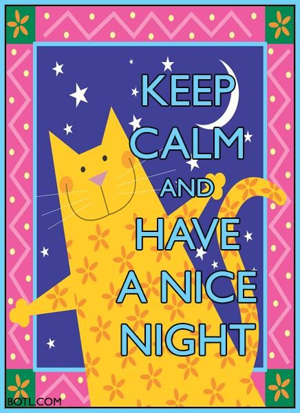 KEEP CALM and HAVE A NICE NIGHT (♪♫ Click http://botl.com/shr/22RCemNe for music ♪♫) #keepcalm #cat