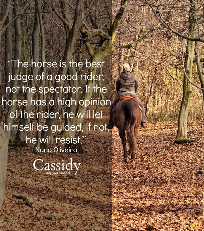 The horse is the best judge of a good rider, not the spectator. If the horse has high opinion of the rider, he will let himself be guided, if not, he will resist. Nuno Oliveira Cassidy Magazine. Living life the cowgirl way