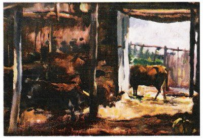 Galeria de Mário Augusto: UM CURRAL (ALHADAS)
