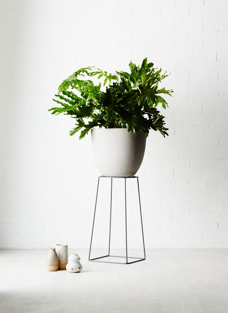 Ivy Muse HOMEBODY Collection; 'Foundation' plant stand in limited edition Pewter.