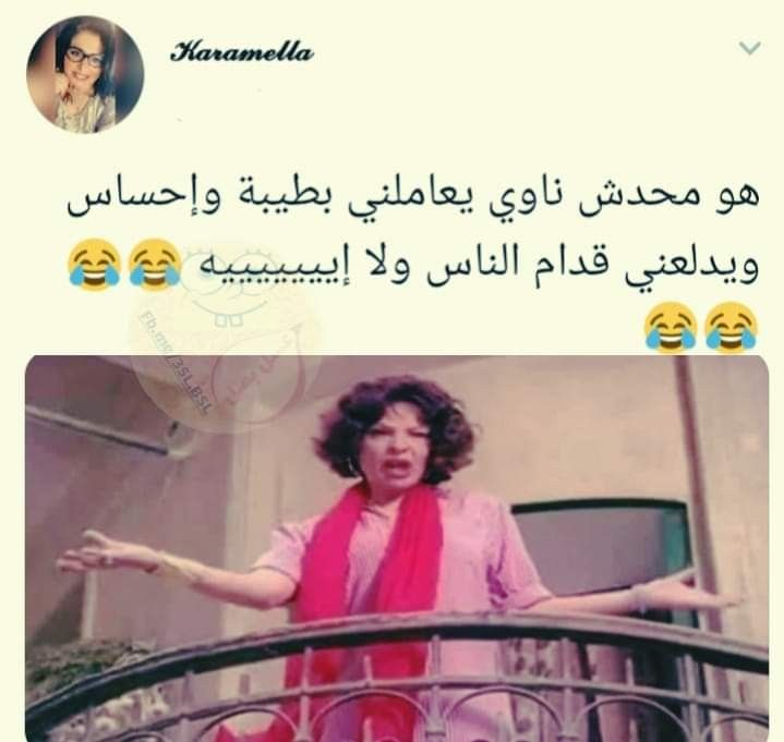 Pin By Saja Trad On هضامة Funny Words Funny Quotes Joke Of The Day
