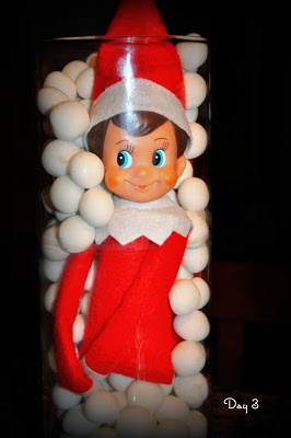 Our Elf Rex is stuck in a vase full of mints! Day 3