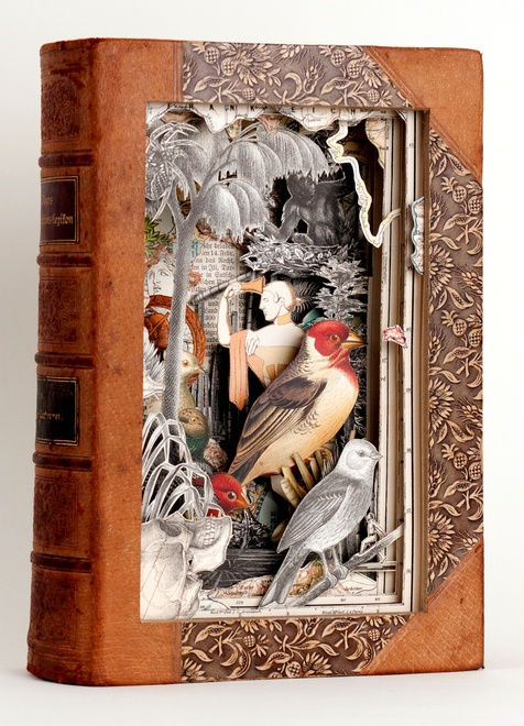 "Alexander Korzer Robinson ~ ""I make book sculptures / cut books by working through a book, page by page, cutting around some of the illustrations while removing others. The images seen in the finished work, are left standing in their original place."""