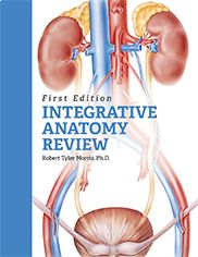 """""""Integrative Anatomy Review""""  Robert Tyler Morris    This text provides readers with high-yield information while creating a dynamic working model. It begins with a discussion of essential concepts followed by select human cadaver views, concept maps, and synthesis exercises. Students work towards integrating even the most challenging information through retrieval-based learning."""