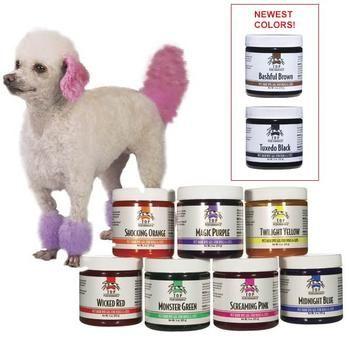 The 25+ best Dog hair dye ideas on Pinterest | Kool aid hair, Kool ...