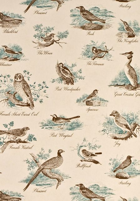 Bewick Birds wallpaper