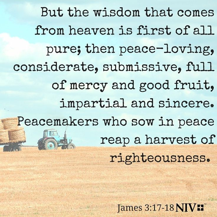 NIV Verse of the Day: James 3:17-18