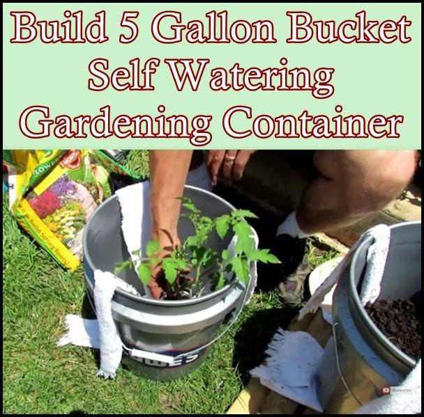 542 best gardening images on pinterest - Self watering 5 gallon bucket garden ...
