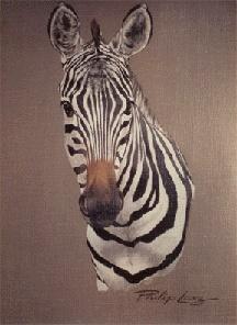 Unlimited edition adult African animal art, Zebra