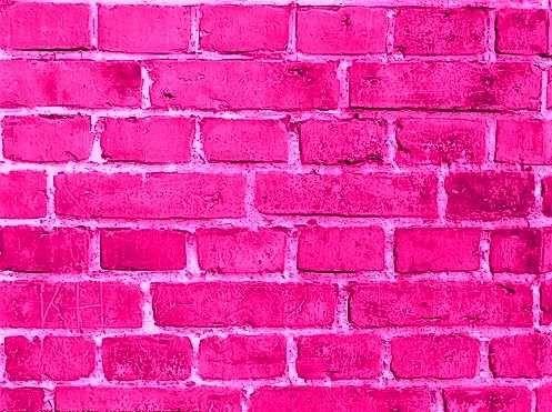 Google Image Result for http://www.thatretailchick.me/wp-content/uploads/2011/04/hot-pink-bricks.jpg