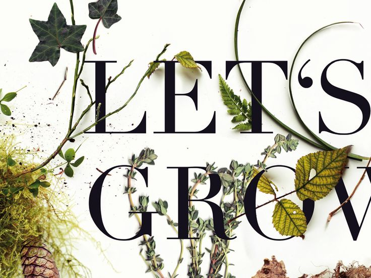 "With my botanical poster ""LET'S GROW"" I participated on a BOTANICAL POSTER CONTEST.  It would be great if you could support me and vote for my Botanical poster (Nr. 099) until 30 April 2016. https://humanempire-voting.de/   #botanical #poster #larabispinck #grow #growing #plants #photography #leaves #wood #forest #collection #graphicdesign #typography #poster #print #nature #letsgrow #everywhereyougo"