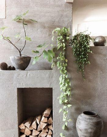 グレーカラーの壁とグリーンの組み合わせ。ポトスなど茎の長い植物と合わせて、落ち着きのあるシックな空間です。鉢などもグレーで揃えて、モダンでかっこいいイメージ。