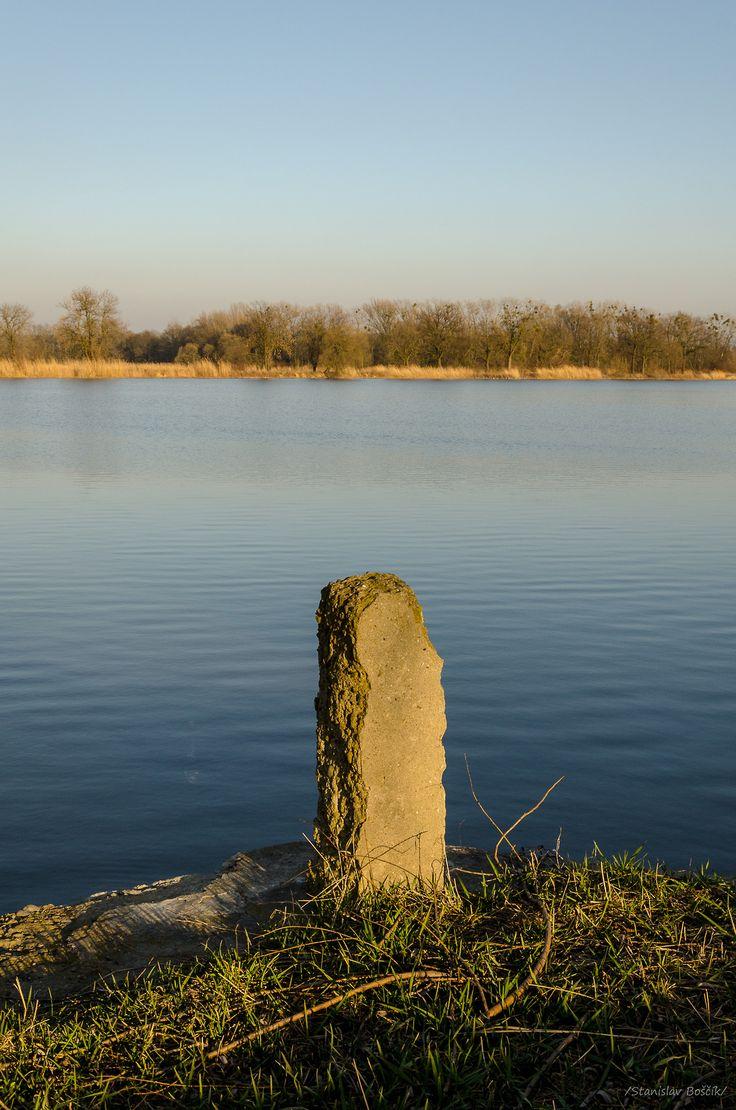 Pond / rybník