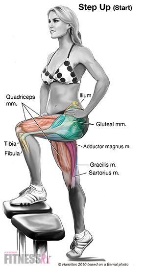 Lower Body Blast: Step-up Workout. Reshape your hips and thighs!