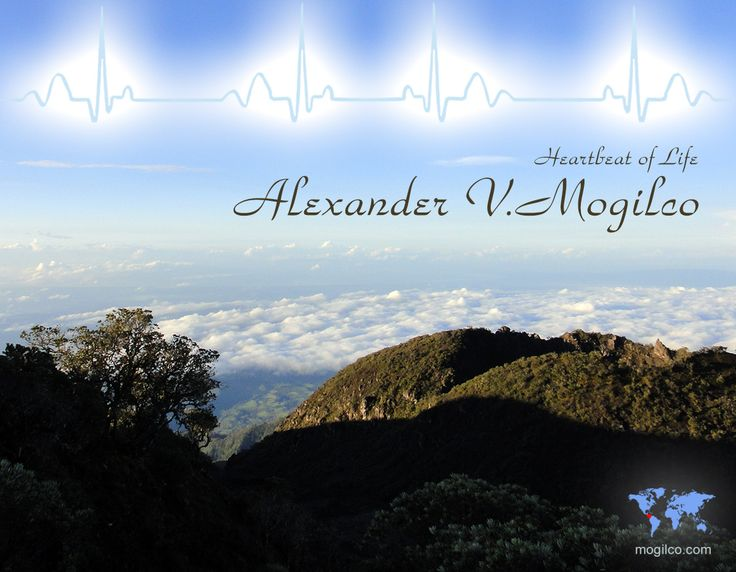 Сердцебиение жизни | Александр Могилко