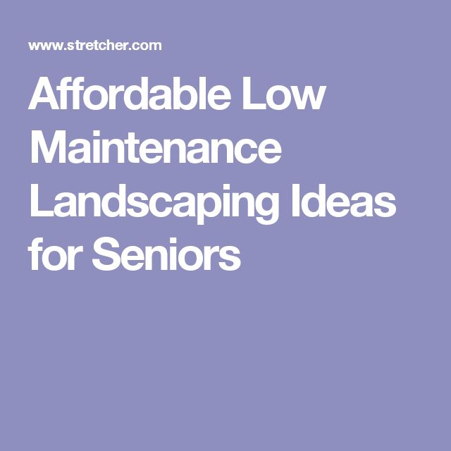 1000 ideas about low maintenance landscaping on pinterest for Low maintenance ground cover ideas