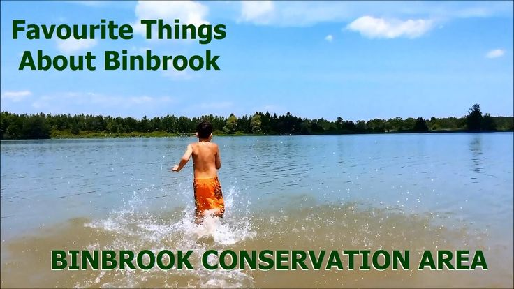 Binbrook Conservation Area - Tony's Homes - RE/MAX